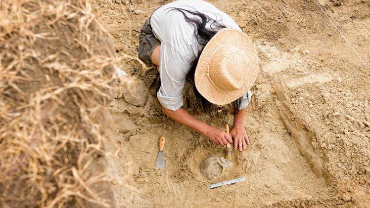 Apa yang Dilakukan Seorang Arkeolog?
